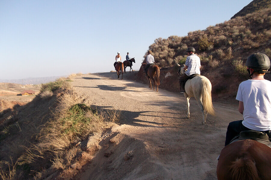 Horse riding in the region